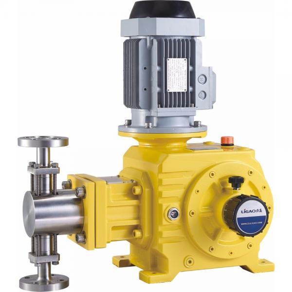 NACHI IPH-55B-40-40-11 IPH Double Gear Pump #3 image